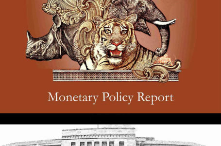 RBI working on inexperienced finance framework