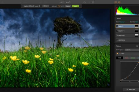 Top Digital Photo Software for Family Photos
